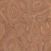 czeczotka-california-08